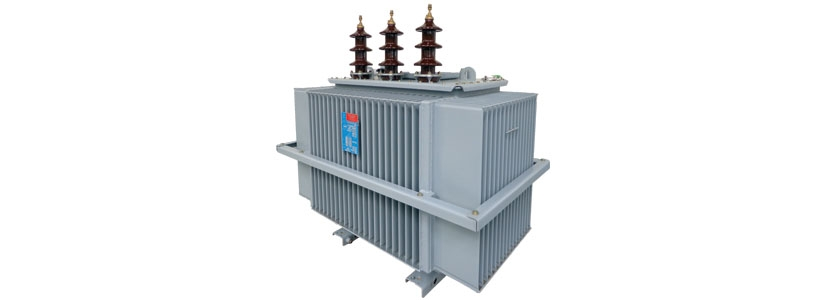Distribution transformers range from 50 to 3000 kVA, 6 6 to